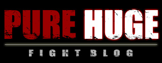 Pure Huge Fight Blog